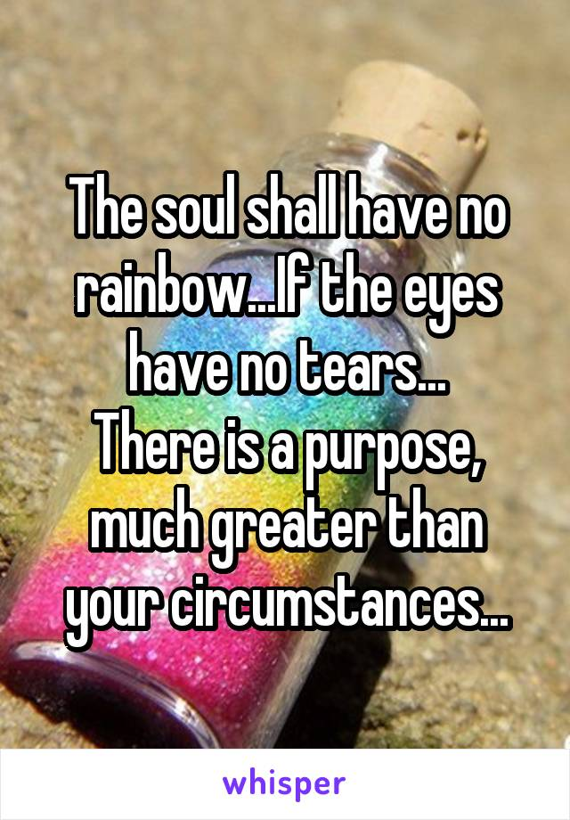 The soul shall have no rainbow...If the eyes have no tears... There is a purpose, much greater than your circumstances...