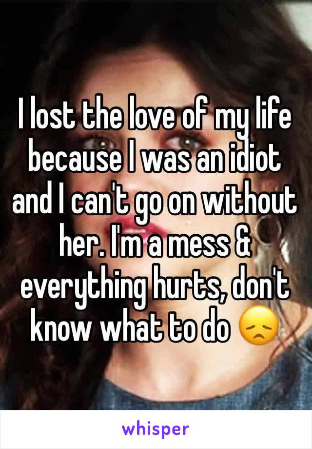 I lost the love of my life because I was an idiot and I can't go on without her. I'm a mess & everything hurts, don't know what to do 😞