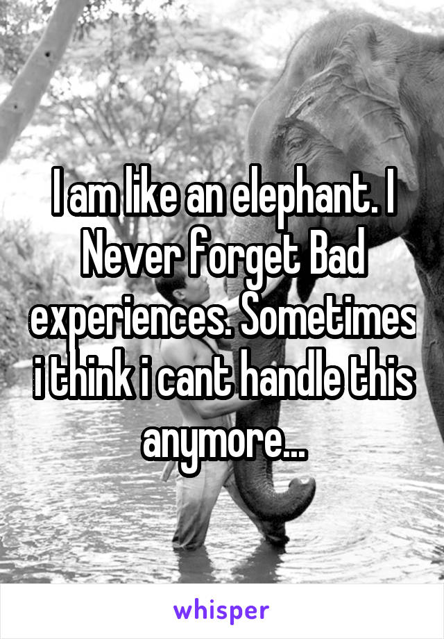 I am like an elephant. I Never forget Bad experiences. Sometimes i think i cant handle this anymore...