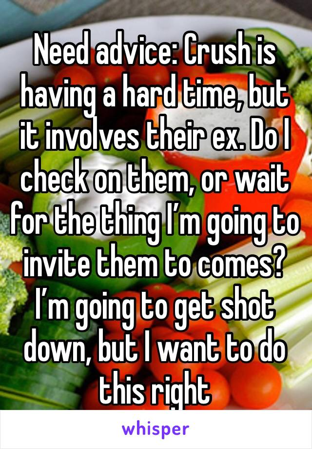 Need advice: Crush is having a hard time, but it involves their ex. Do I check on them, or wait for the thing I'm going to invite them to comes? I'm going to get shot down, but I want to do this right