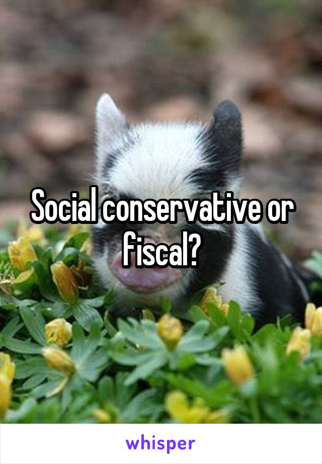 Social conservative or fiscal?