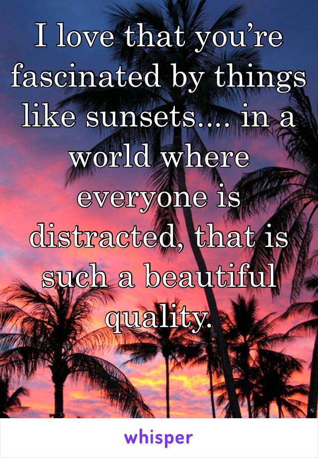 I love that you're fascinated by things like sunsets.... in a world where everyone is distracted, that is such a beautiful quality.