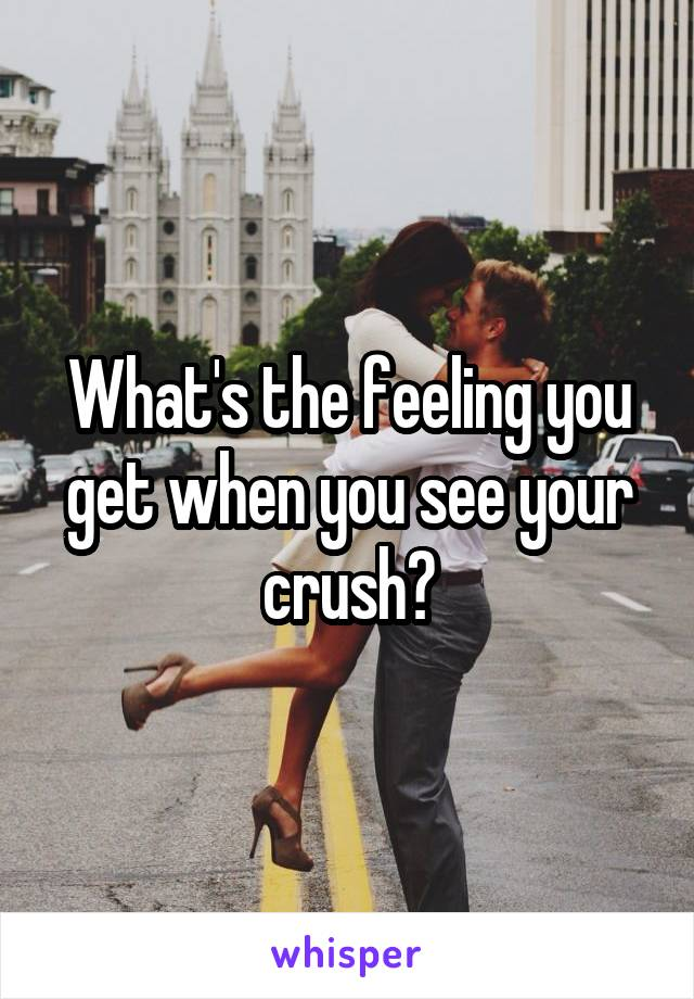 What's the feeling you get when you see your crush?