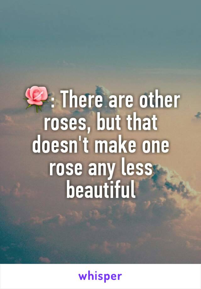 🌹: There are other roses, but that doesn't make one rose any less beautiful