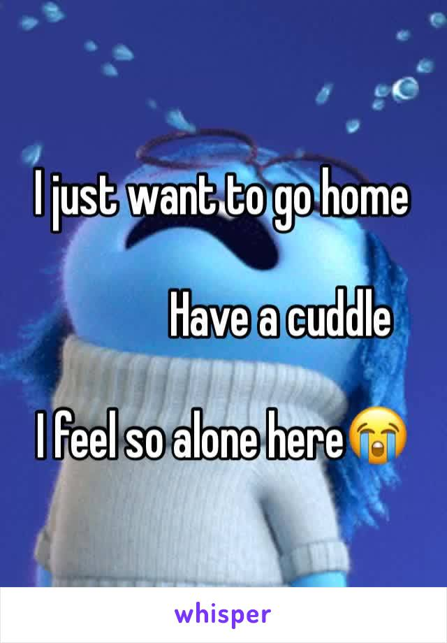I just want to go home                Have a cuddle  I feel so alone here😭