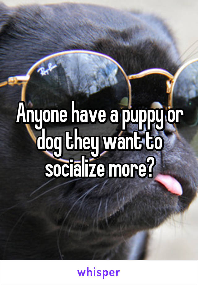 Anyone have a puppy or dog they want to socialize more?