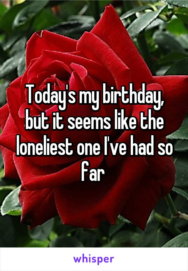 Today's my birthday, but it seems like the loneliest one I've had so far