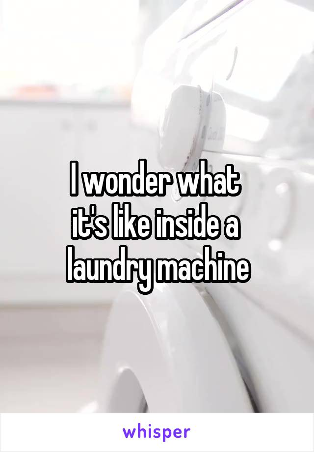 I wonder what  it's like inside a  laundry machine