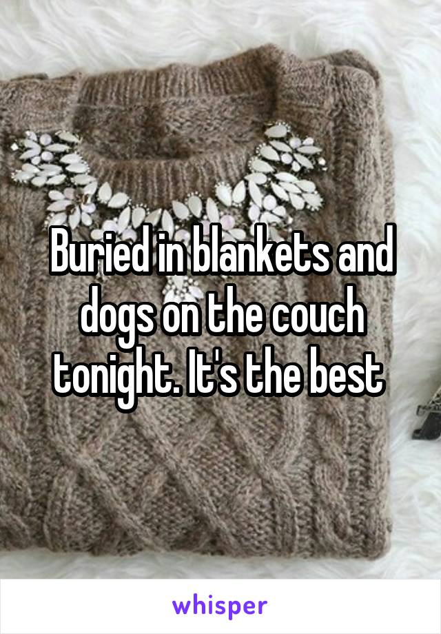 Buried in blankets and dogs on the couch tonight. It's the best
