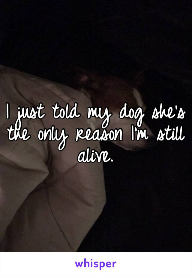 I just told my dog she's the only reason I'm still alive.
