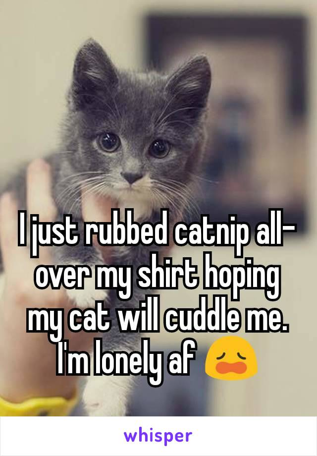 I just rubbed catnip all-over my shirt hoping my cat will cuddle me. I'm lonely af 😩