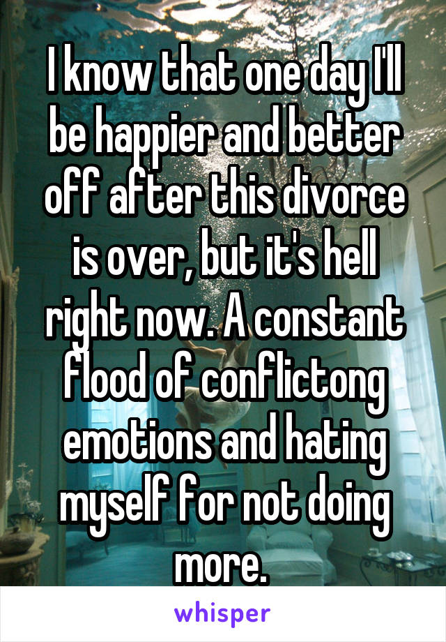 I know that one day I'll be happier and better off after this divorce is over, but it's hell right now. A constant flood of conflictong emotions and hating myself for not doing more.