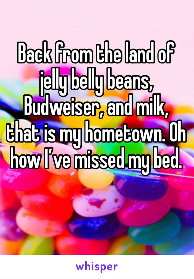 Back from the land of jelly belly beans, Budweiser, and milk, that is my hometown. Oh how I've missed my bed.