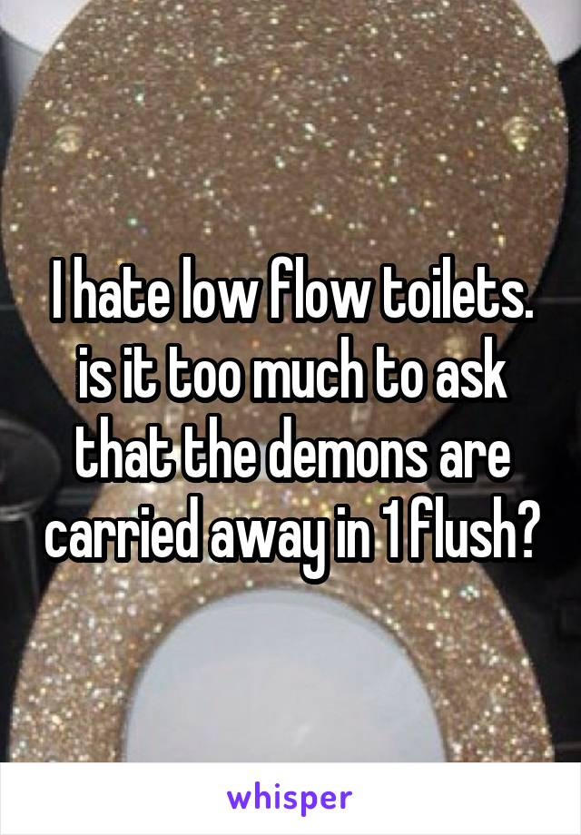 I hate low flow toilets. is it too much to ask that the demons are carried away in 1 flush?