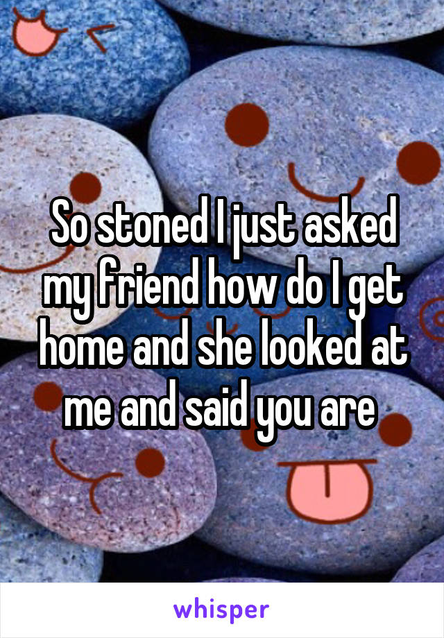 So stoned I just asked my friend how do I get home and she looked at me and said you are