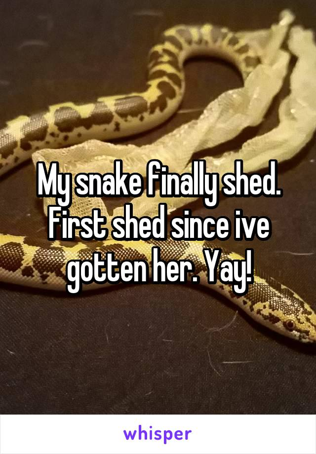 My snake finally shed. First shed since ive gotten her. Yay!