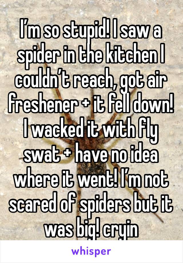 I'm so stupid! I saw a spider in the kitchen I couldn't reach, got air freshener + it fell down! I wacked it with fly swat + have no idea where it went! I'm not scared of spiders but it was big! cryin