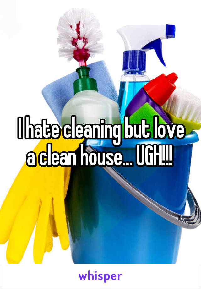 I hate cleaning but love a clean house... UGH!!!