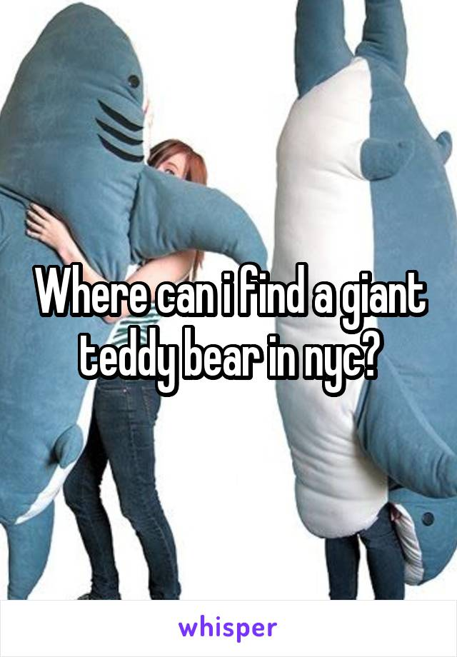 Where can i find a giant teddy bear in nyc?