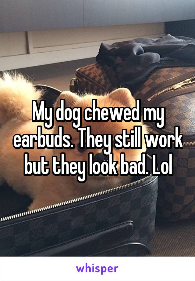 My dog chewed my earbuds. They still work but they look bad. Lol