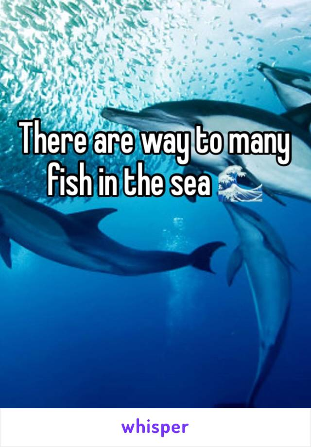 There are way to many fish in the sea 🌊
