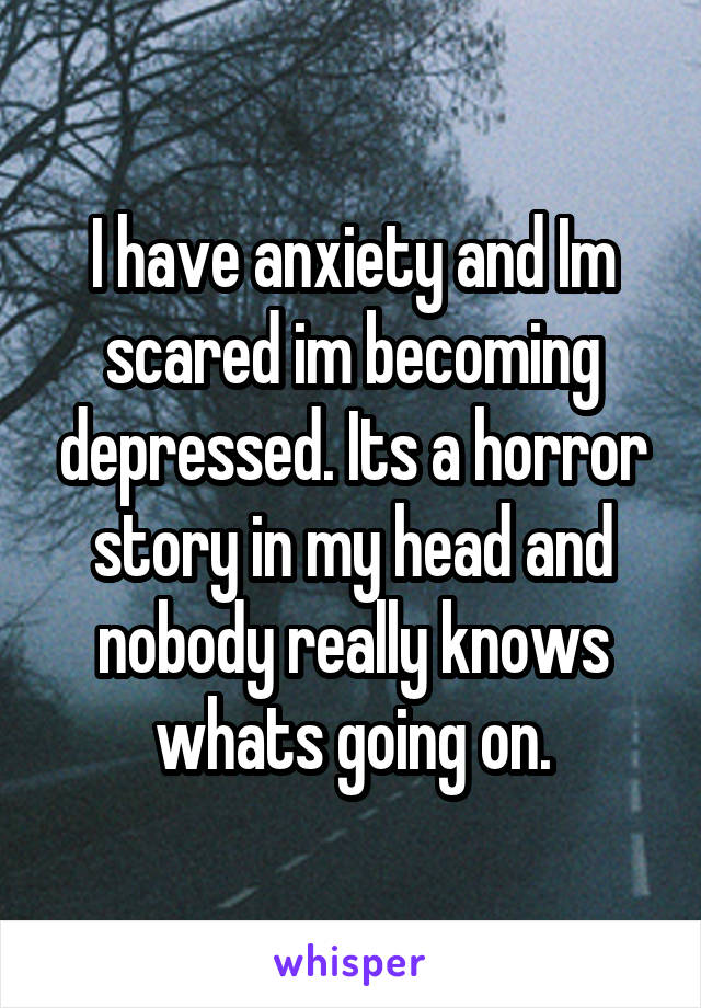 I have anxiety and Im scared im becoming depressed. Its a horror story in my head and nobody really knows whats going on.