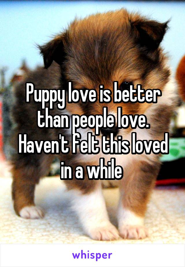 Puppy love is better than people love. Haven't felt this loved in a while