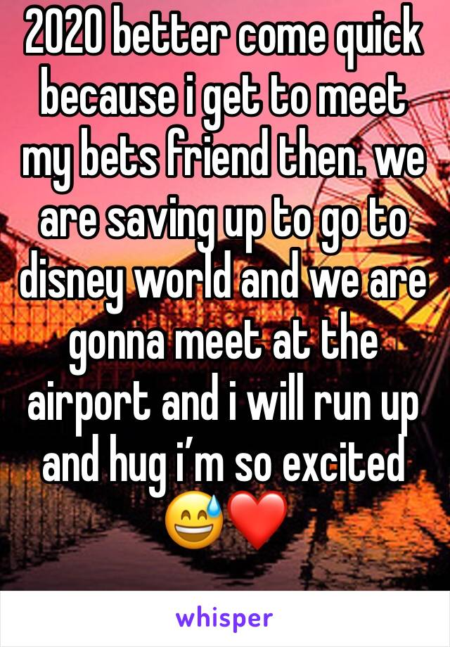 2020 better come quick because i get to meet my bets friend then. we are saving up to go to disney world and we are gonna meet at the airport and i will run up and hug i'm so excited 😅❤️