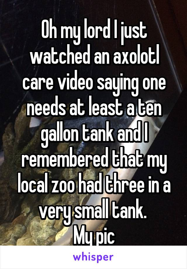 Oh my lord I just watched an axolotl care video saying one needs at least a ten gallon tank and I remembered that my local zoo had three in a very small tank.  My pic