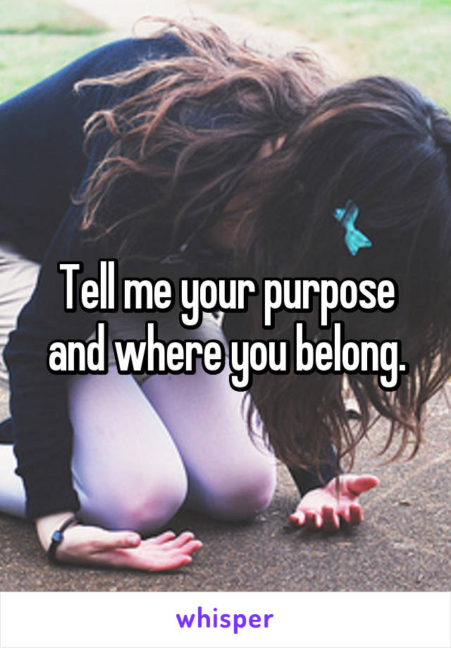 Tell me your purpose and where you belong.