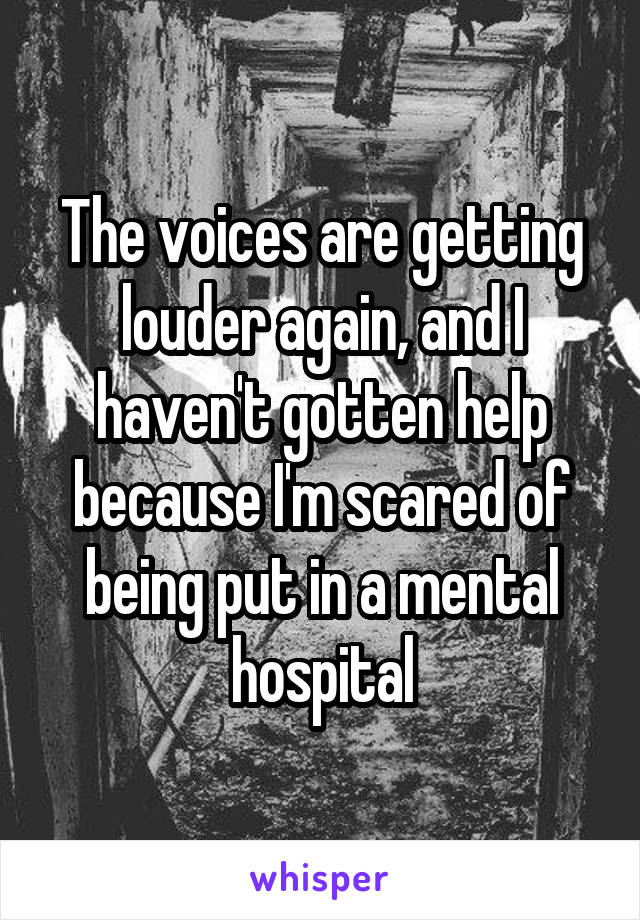 The voices are getting louder again, and I haven't gotten help because I'm scared of being put in a mental hospital