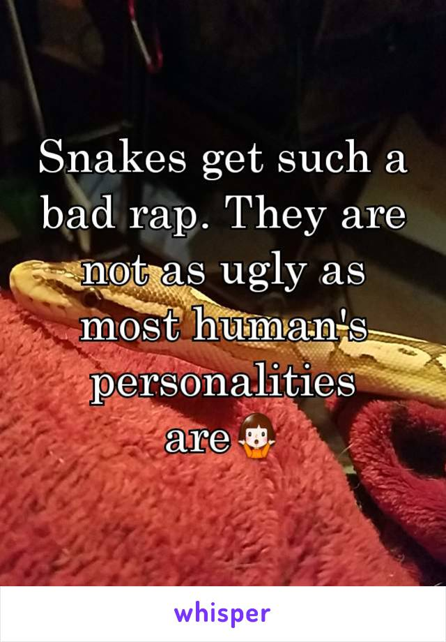 Snakes get such a bad rap. They are not as ugly as most human's personalities are🤷