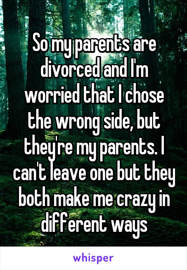 So my parents are divorced and I'm worried that I chose the wrong side, but they're my parents. I can't leave one but they both make me crazy in different ways