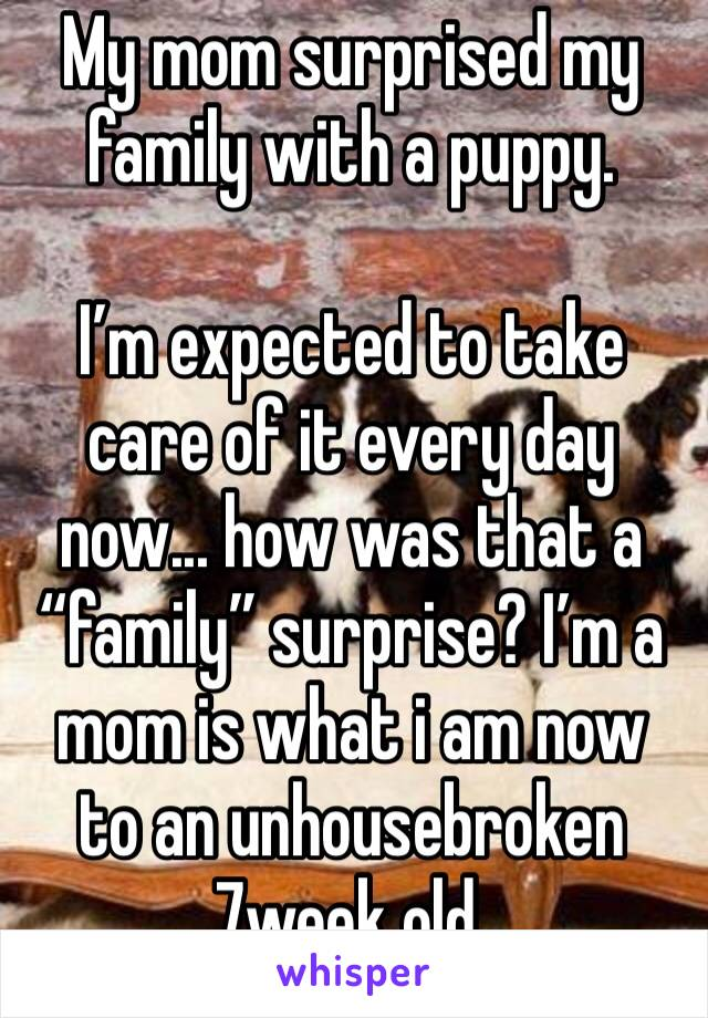 "My mom surprised my family with a puppy.  I'm expected to take care of it every day now... how was that a ""family"" surprise? I'm a mom is what i am now to an unhousebroken 7week old."