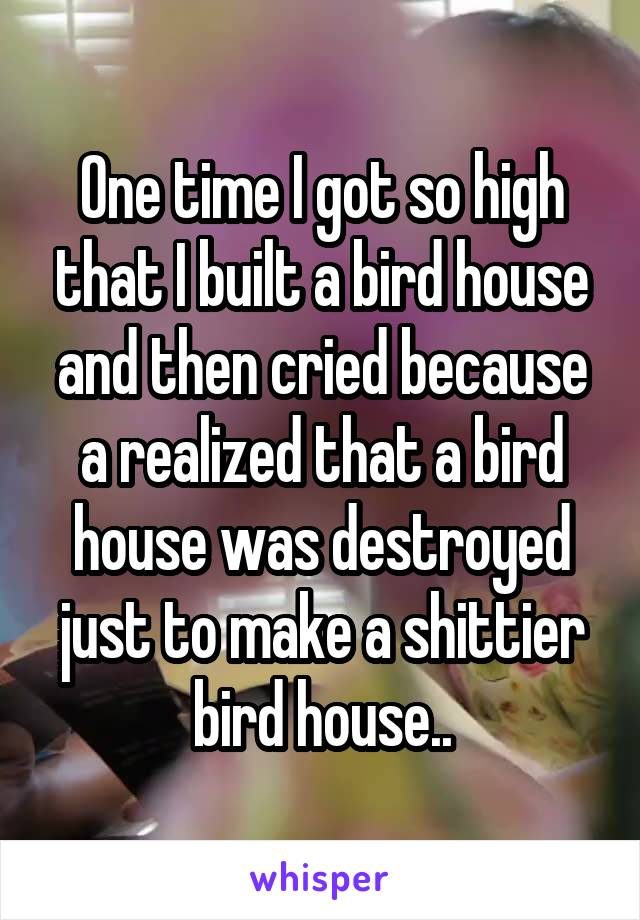One time I got so high that I built a bird house and then cried because a realized that a bird house was destroyed just to make a shittier bird house..