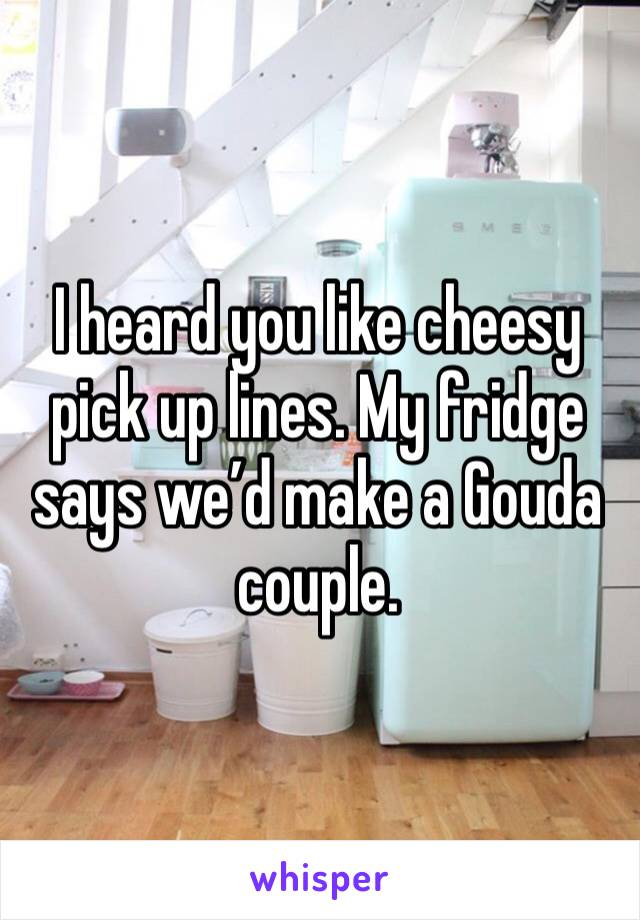 I heard you like cheesy pick up lines. My fridge says we'd make a Gouda couple.