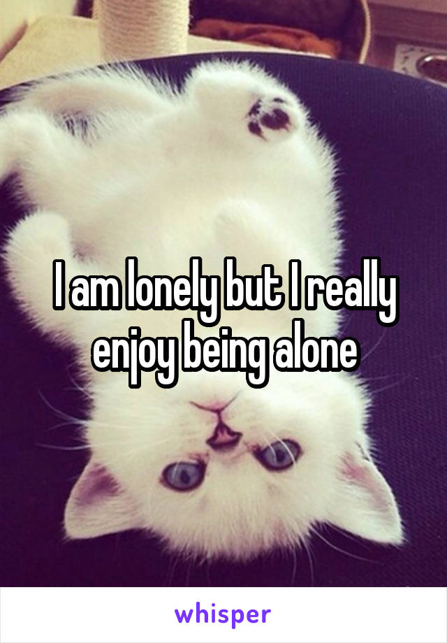 I am lonely but I really enjoy being alone