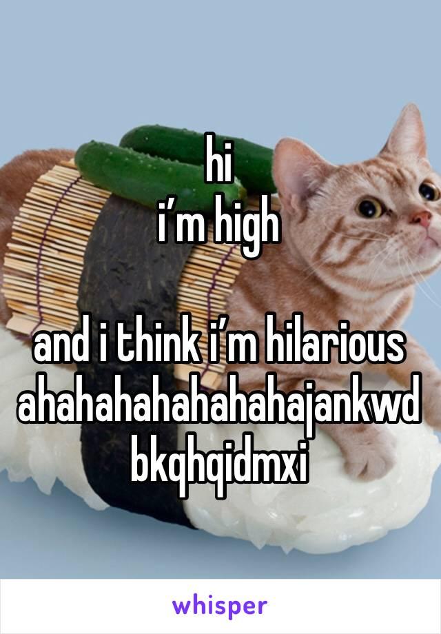 hi i'm high  and i think i'm hilarious ahahahahahahahajankwdbkqhqidmxi