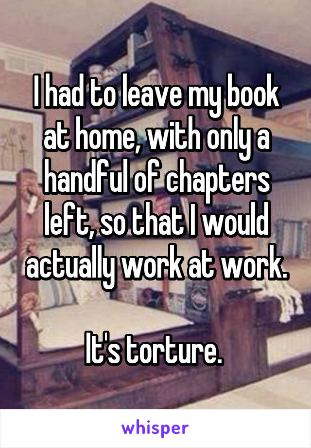 I had to leave my book at home, with only a handful of chapters left, so that I would actually work at work.  It's torture.