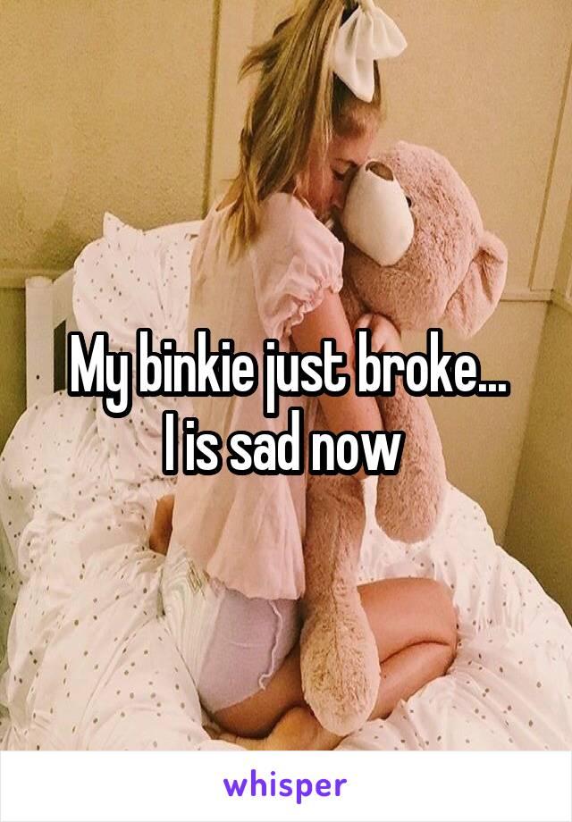My binkie just broke... I is sad now