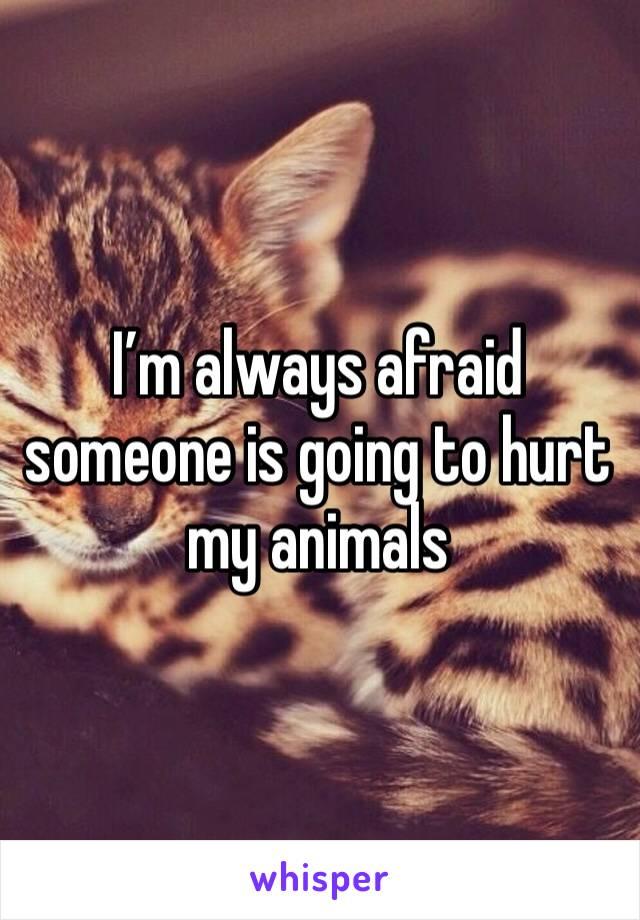 I'm always afraid someone is going to hurt my animals