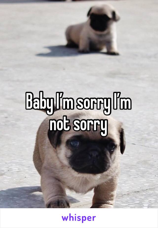 Baby I'm sorry I'm not sorry