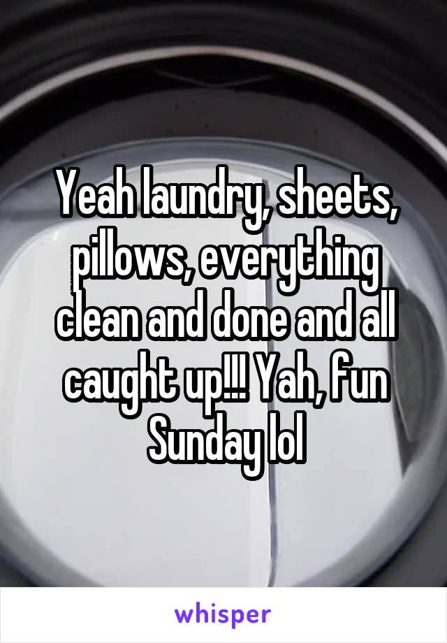 Yeah laundry, sheets, pillows, everything clean and done and all caught up!!! Yah, fun Sunday lol