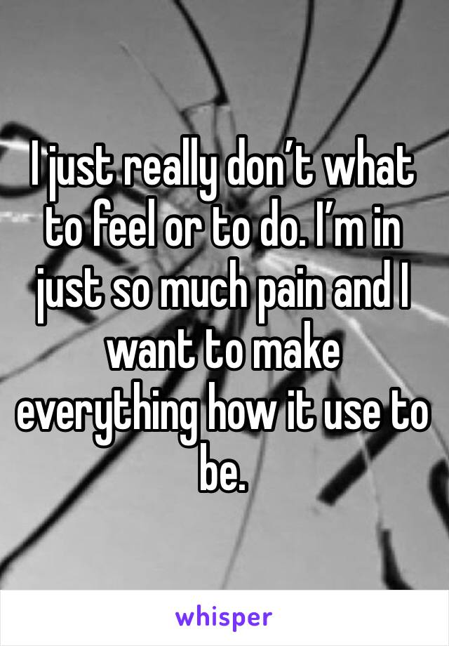 I just really don't what to feel or to do. I'm in just so much pain and I want to make everything how it use to be.