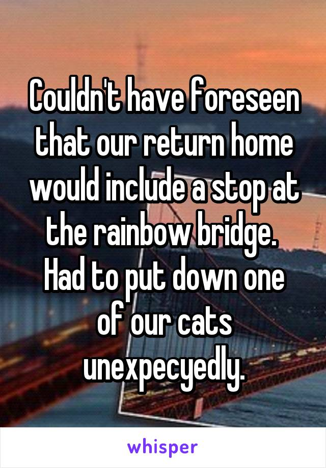 Couldn't have foreseen that our return home would include a stop at the rainbow bridge.  Had to put down one of our cats unexpecyedly.