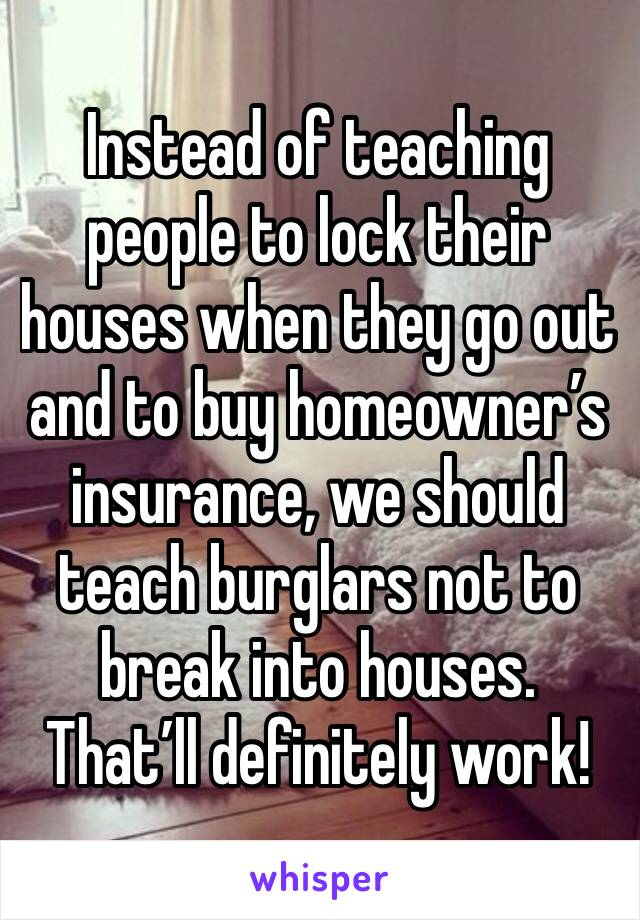 Instead of teaching people to lock their houses when they go out and to buy homeowner's insurance, we should teach burglars not to break into houses. That'll definitely work!
