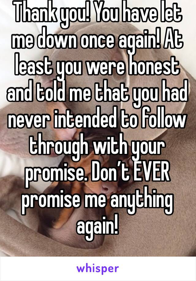 Thank you! You have let me down once again! At least you were honest and told me that you had never intended to follow through with your promise. Don't EVER promise me anything again!