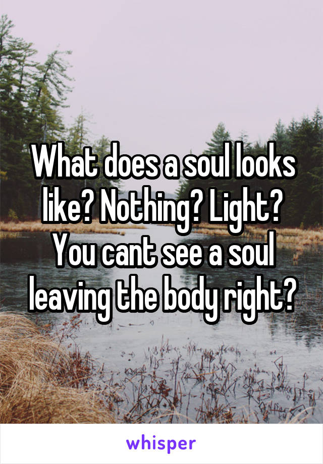 What does a soul looks like? Nothing? Light? You cant see a soul leaving the body right?