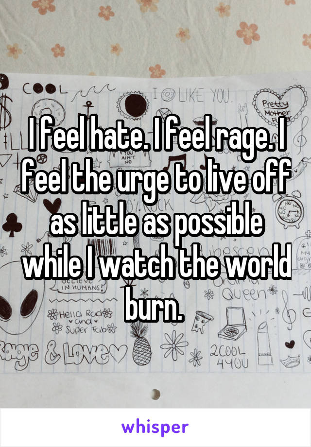 I feel hate. I feel rage. I feel the urge to live off as little as possible while I watch the world burn.