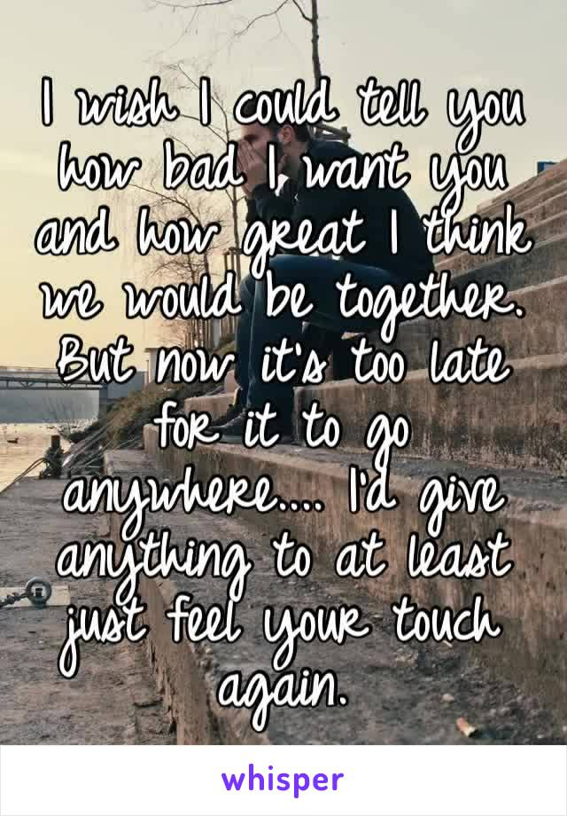 I wish I could tell you how bad I want you and how great I think we would be together. But now it's too late for it to go anywhere.... I'd give anything to at least just feel your touch again.
